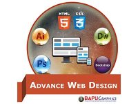 Course Content in Advanced Web Design Course