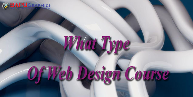 what Type of Web design course