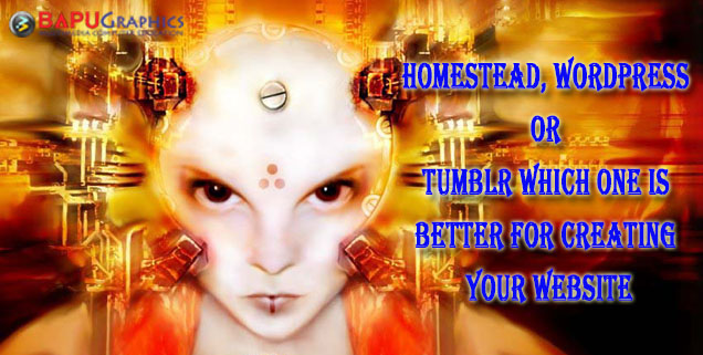 Homestead, WordPress  Or  Tumblr Which One is  Better For Creating Your Website