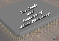 The Tools and Features of Adobe Photoshop