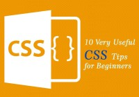 10-Very-Useful-CSS-Tips-for-Beginners
