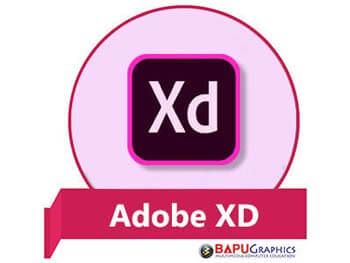 Learn Adobe XD Course at Bapu Graphics