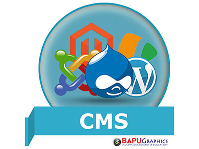 Content Management System (CMS) Course