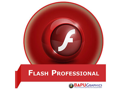 Flash Professional Course
