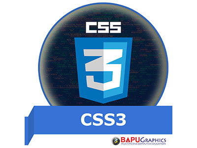 best-css3-course-institute-in-delhi