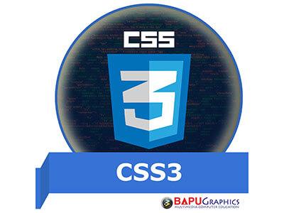 best-css3-course-institute-in-delhi