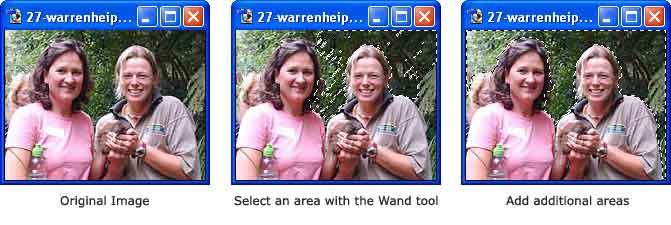 magic-wand-tool-example