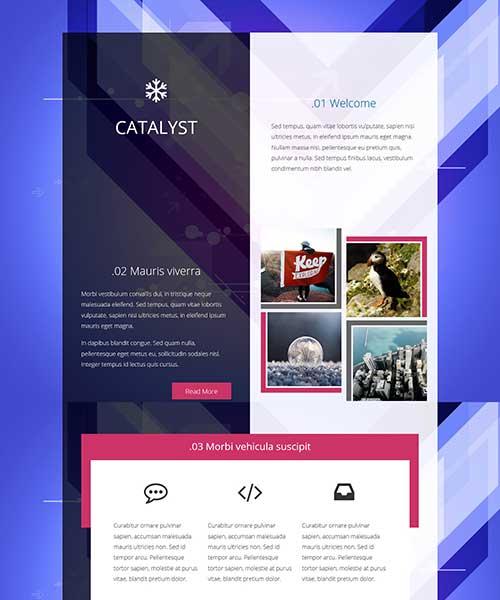 web-template-51