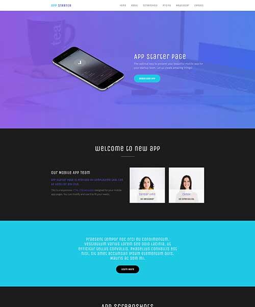 web-template-11