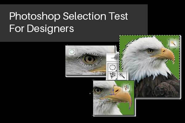 Photoshop Selection test For Designers
